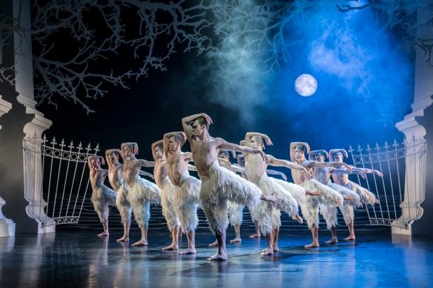 Matthew Bourne's Swan Lake. Edessä Will Bozier (The Swan). Kuva: Johan Persson.