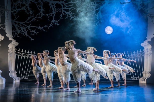 Matthew Bourne's Swan Lake. Edessä Will Bozier (The Swan). Kuva: Johan Persson.