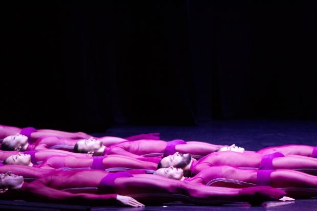 Jacopo Godani: High Breed. Kuva. Petri Laitinen
